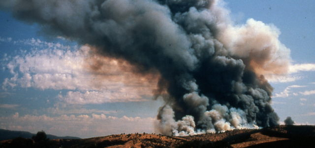 The 6 P's to Wildfire Preparedness & Survival
