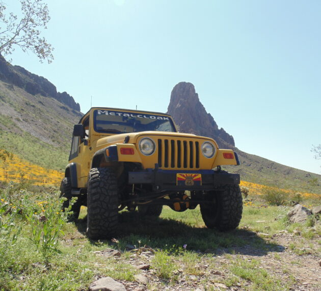 """ModernJeepers Explore a Once in a Lifetime Wildflower """"SuperBloom"""""""