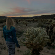 [catie's corner] Jeepin' in Joshua Tree National Park [pics]