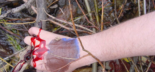 Surviving Disaster with Wilderness First Aid Class