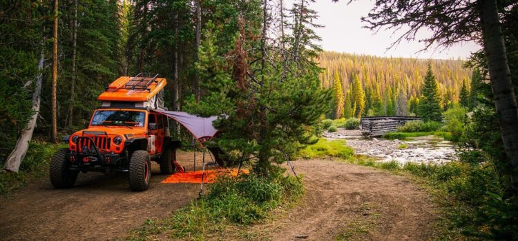 The Many Overlanding Options